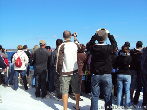 View of the crowd and Jason whale watching